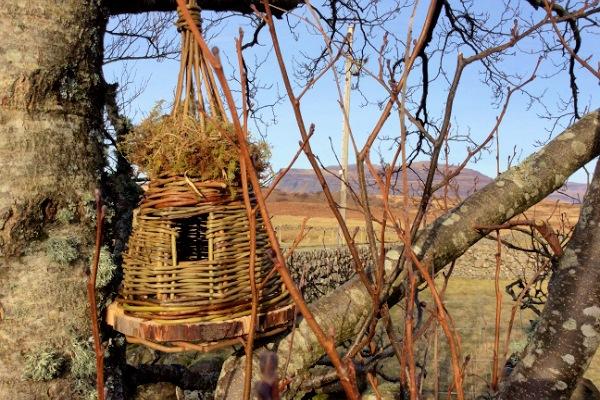 Teepee Bird box